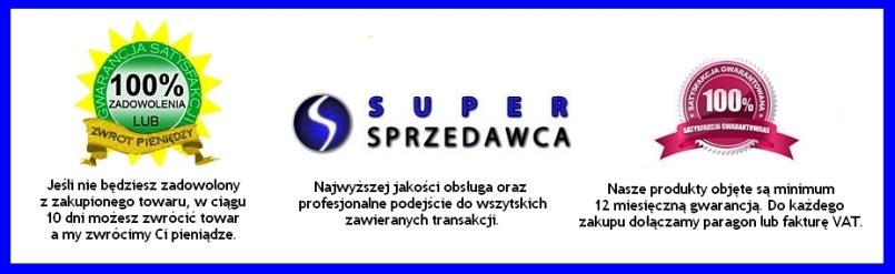 http://zdjecia.dobre-systemy.pl/gotoweallegro/supersprzedawca2.jpg